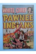 White Chief of the Pawnee Indians  GD-