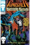 Punisher Summer Special  1  VF